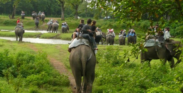 Chitwan Safari Tour