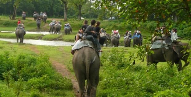 Chitwan Safari Tour