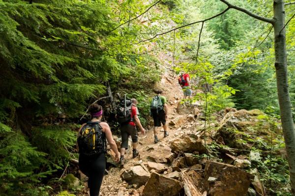 Short Tour & Hiking